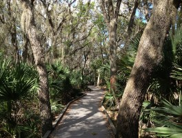 Visitor Center Boardwalk