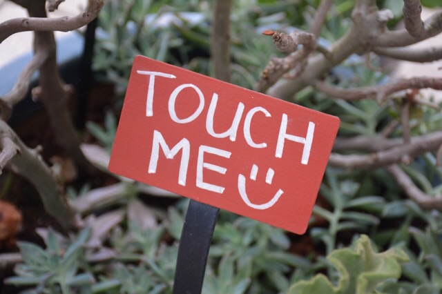 The Enabling Garden encourages touch