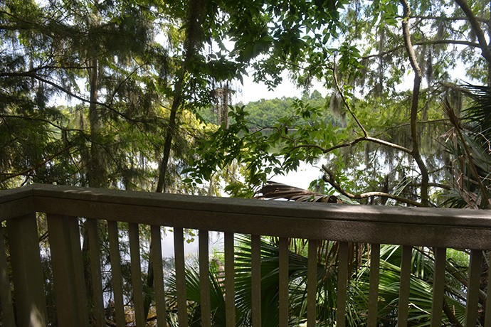 Observation deck on the St. Johns River