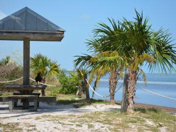 CB Harvey Rest Beach Park
