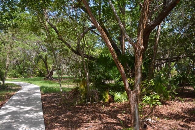 An arboretum of native trees
