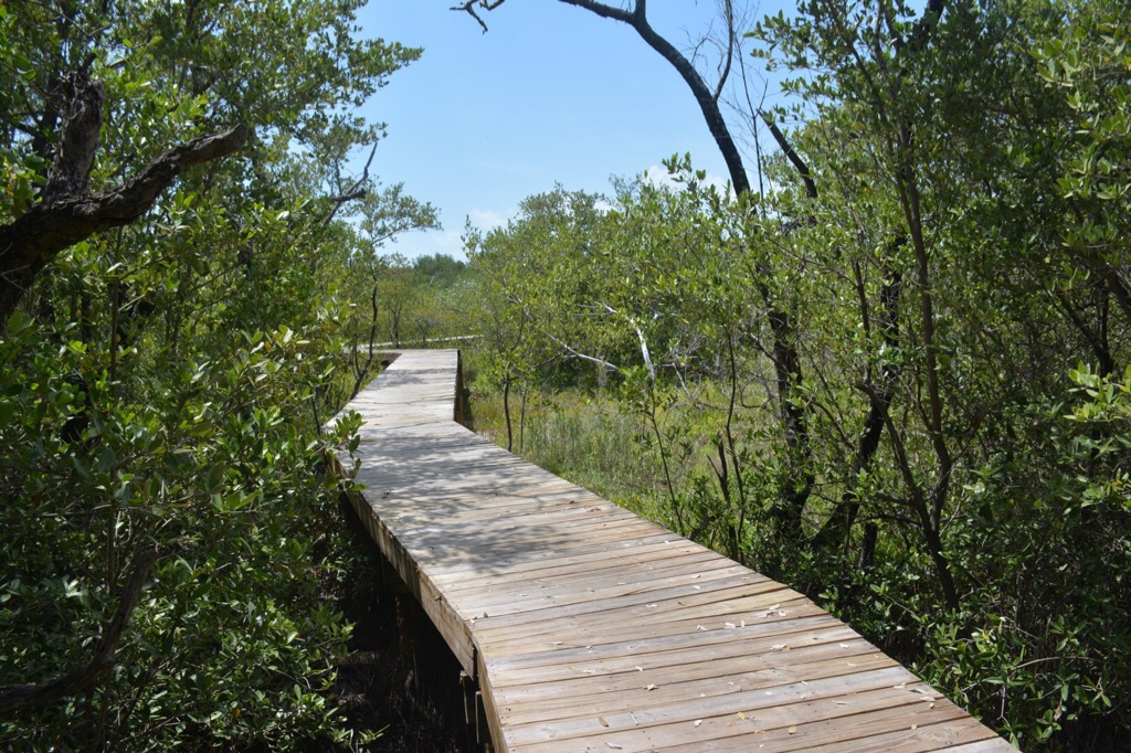 Key West Au Naturel Florida Hikes