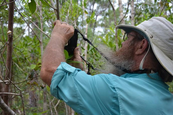 John photographs a liguus tree snail in Everglades National Park