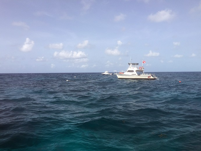 Moored at Molasses Reef