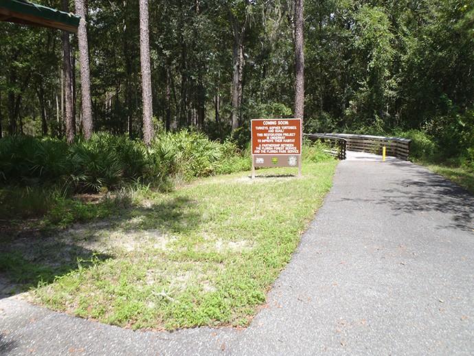 Woodpecker Trail