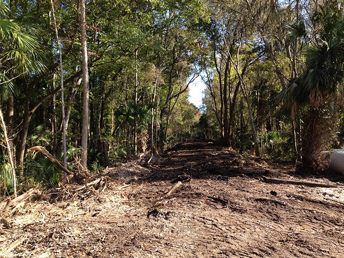 In January, crews cleared the old railroad grade in Edgewater