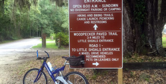 Biking the Woodpecker Trail