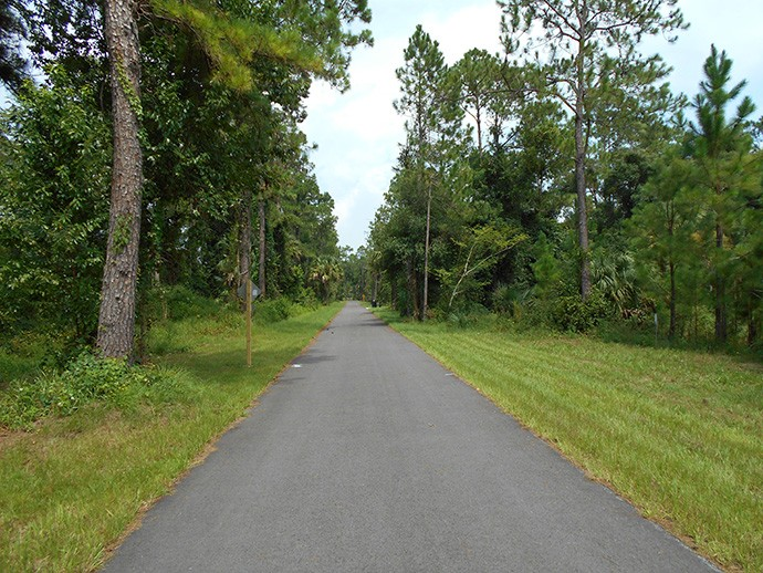 Typical straightaway on this section of trail