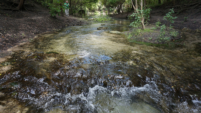 Outflow of the springs to the Suwannee River