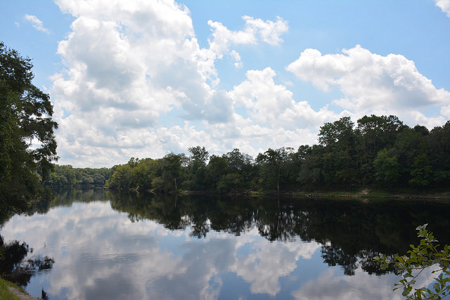 View of the Suwannee River at Royal Springs