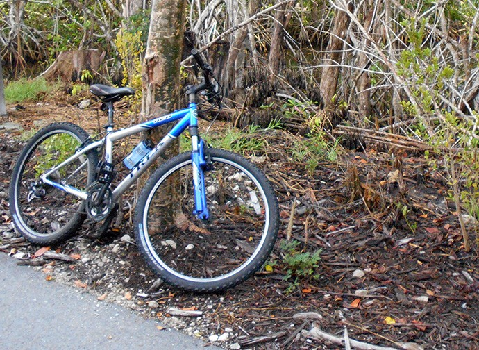 Trek 820 along the Gordon River Greenway