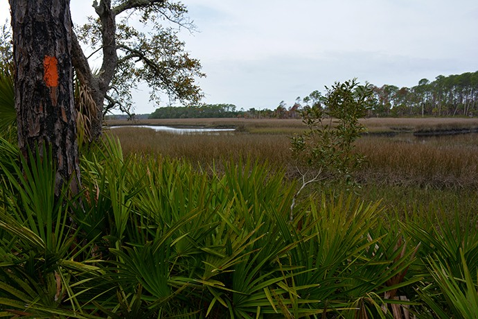 Florida Trail, Marsh Point