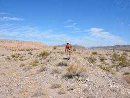 Hiking the Colorado River Heritage Greenway