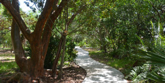 Sonny McCoy Indigenous Park