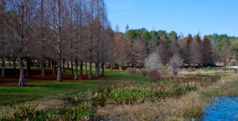 billfrederickpark-341x173