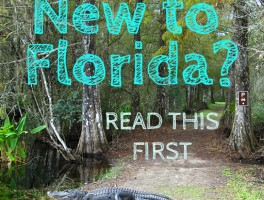 New to Florida?