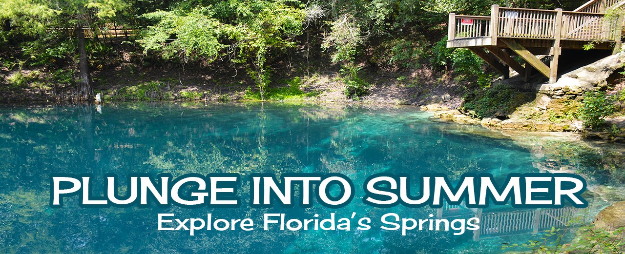 Explore Florida's Springs