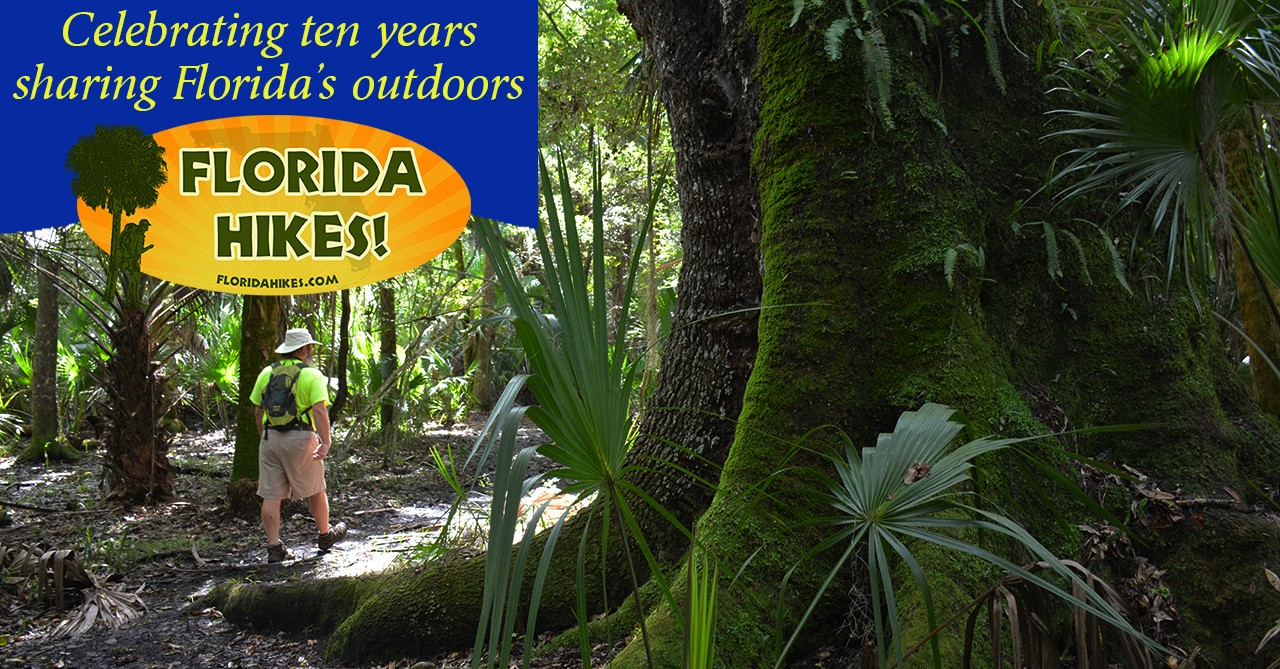Celebrating 10 years of Florida Hikes