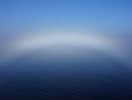 Inside a Fogbow