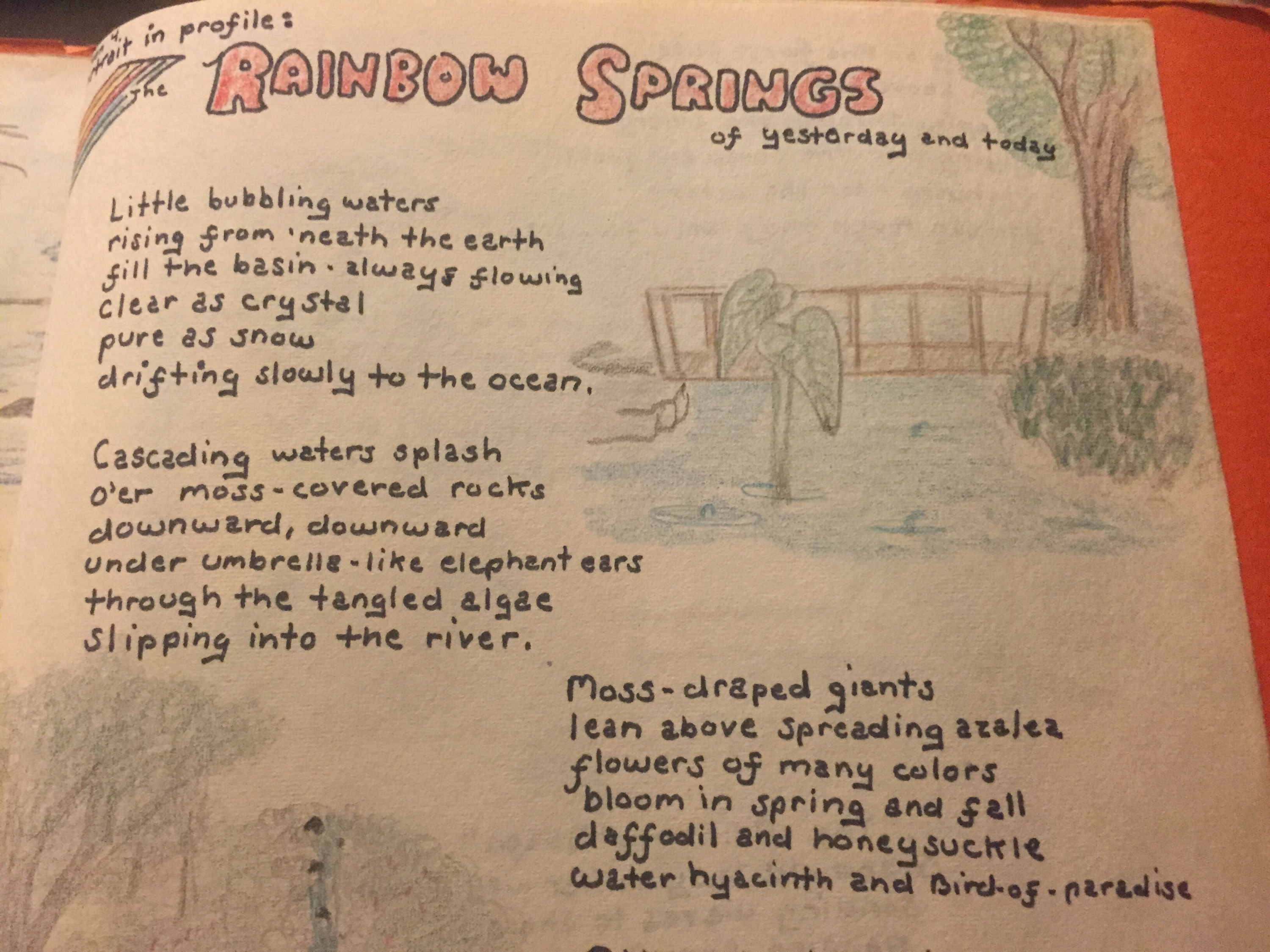 Rainbow Springs poem