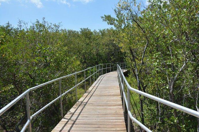 Boardwalk in Little Hamica Park