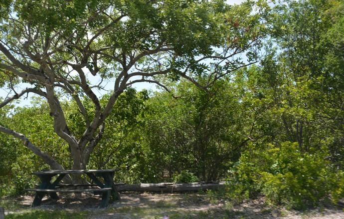 Picnic spot in Little Hamica Park