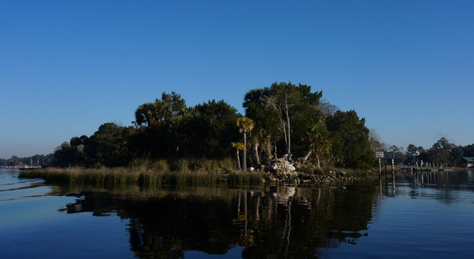 Wakulla and St. Marks Rivers