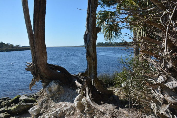 St. Marks and Wakulla Rivers