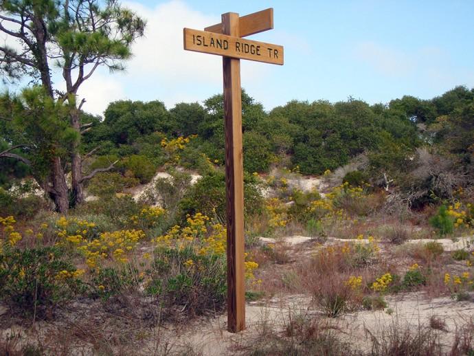 Island Ridge Trail