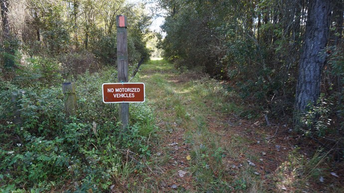 CR 235 access to Florida Trail