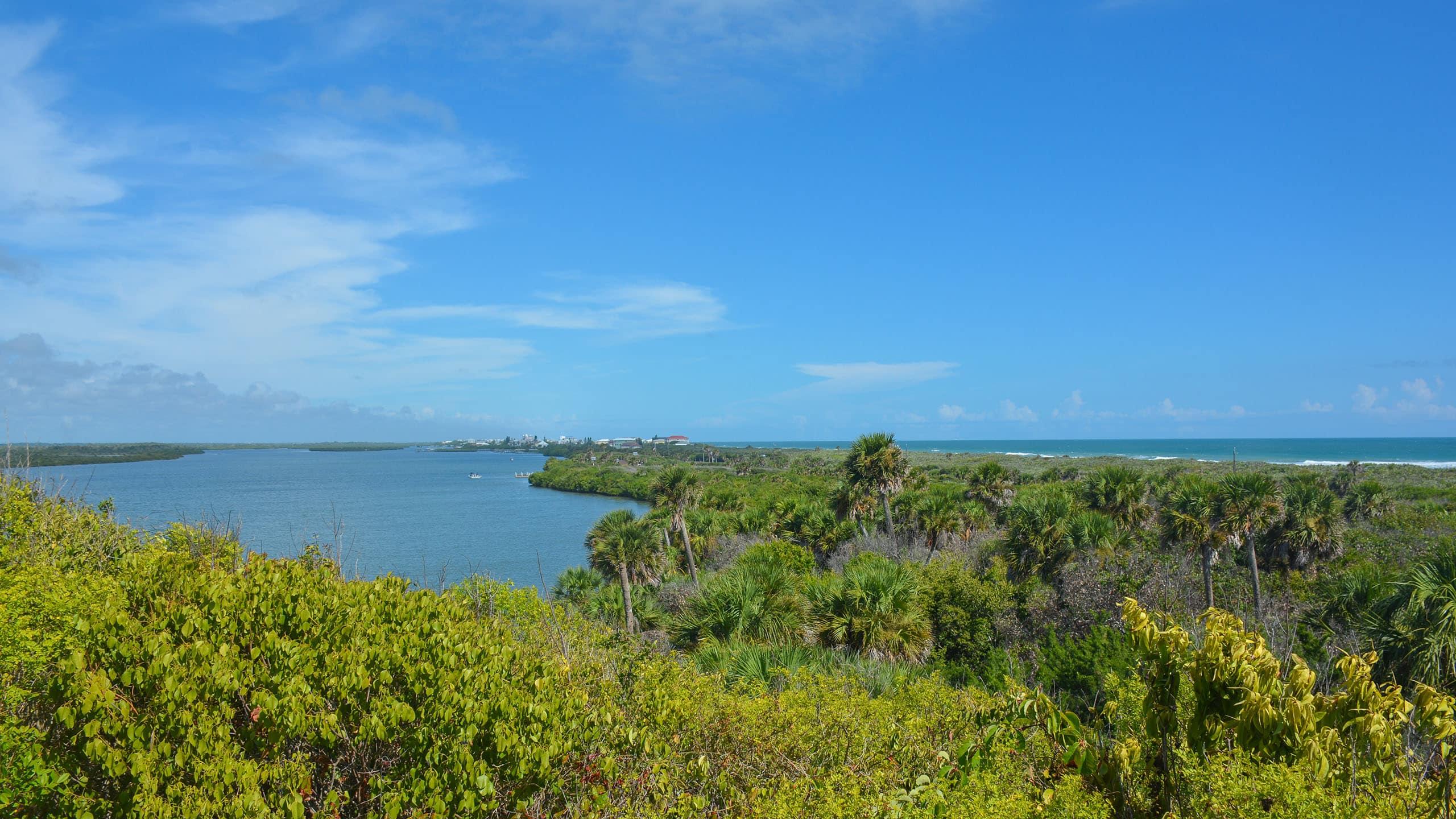 Turtle Mound view