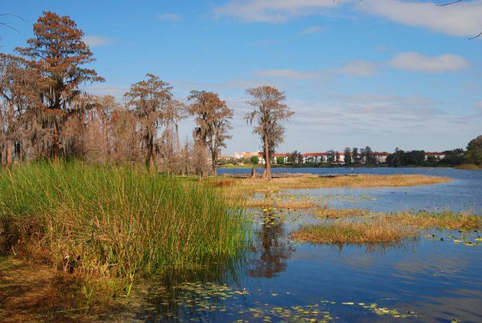 Turkey Lake Orlando