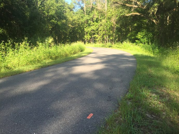 Florida Trail Dunnellon