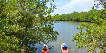 Oleta River State Park