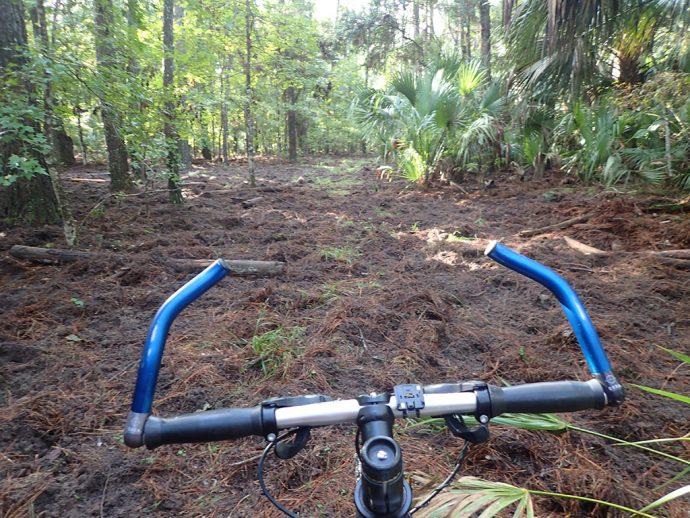 Ross Allen Trail