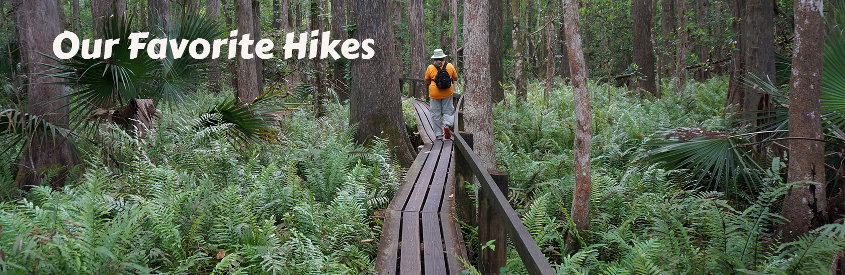 Our Favorite Hikes