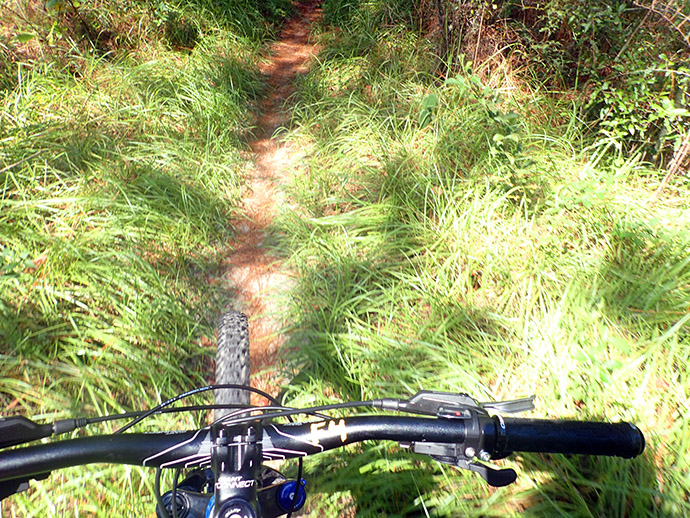 Especially when the trail is this grassy in places!