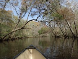 In a canoe