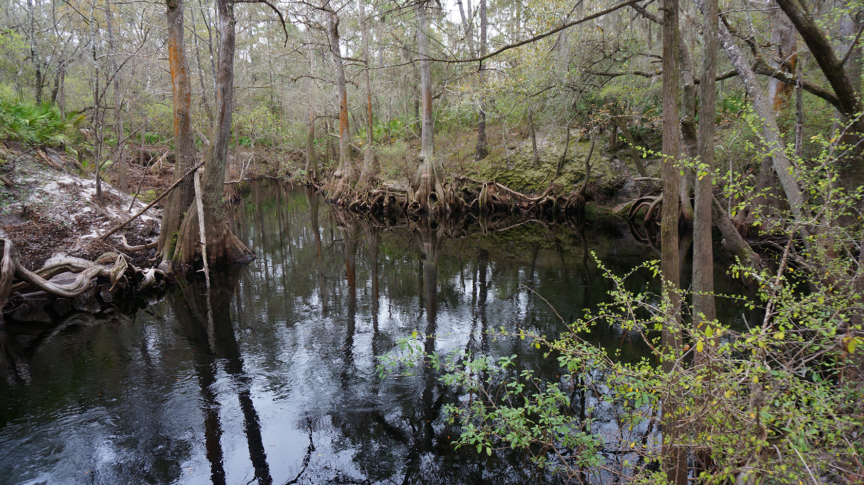 Florida Trail, Sopchoppy River