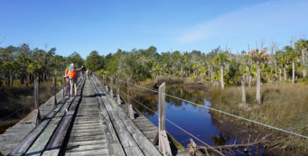 Pinhook River Bridge on the Florida Trail