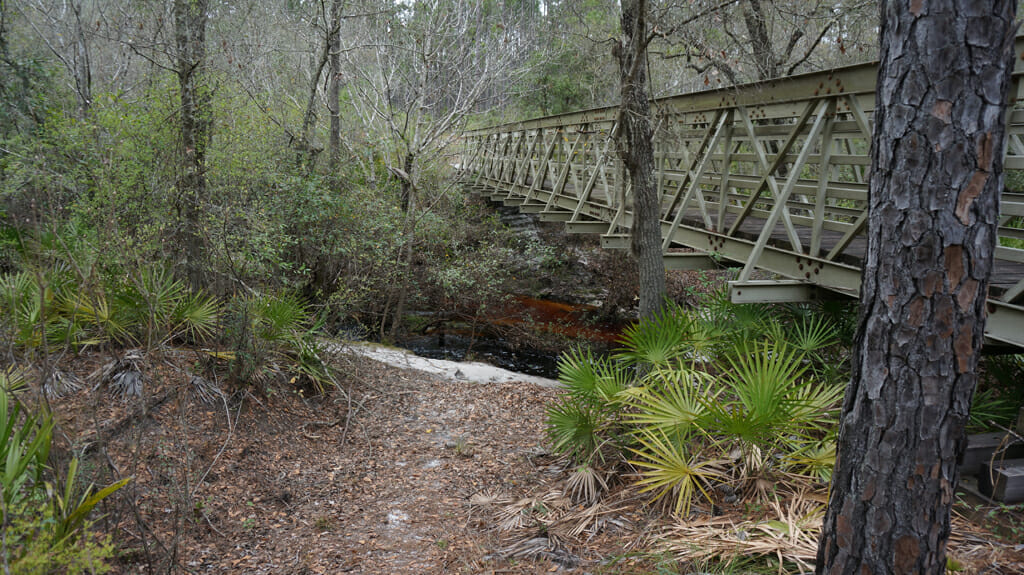 Bridge over Monkey Creek