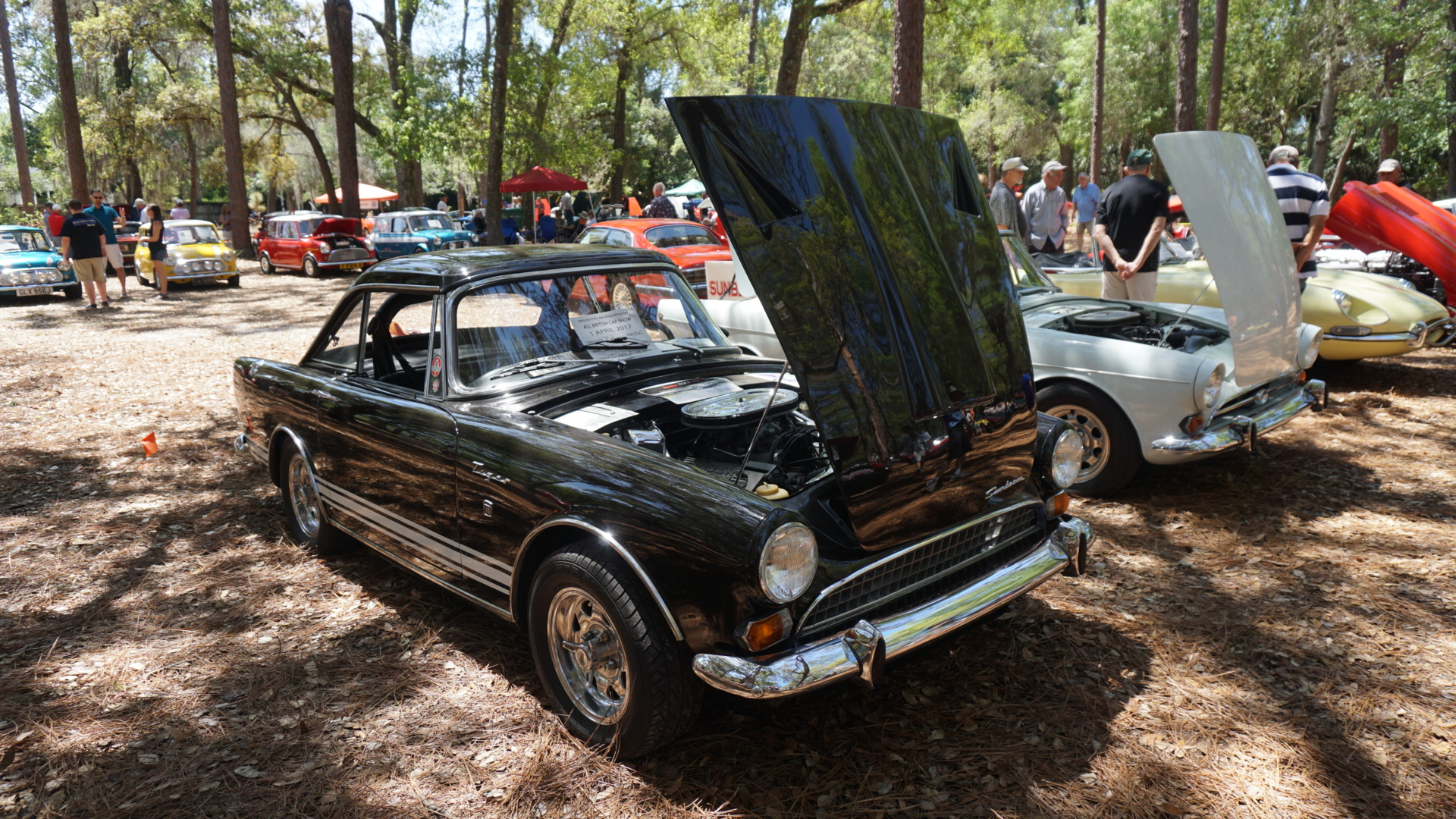 2017 04 british car show mead gardens 23 florida hikes