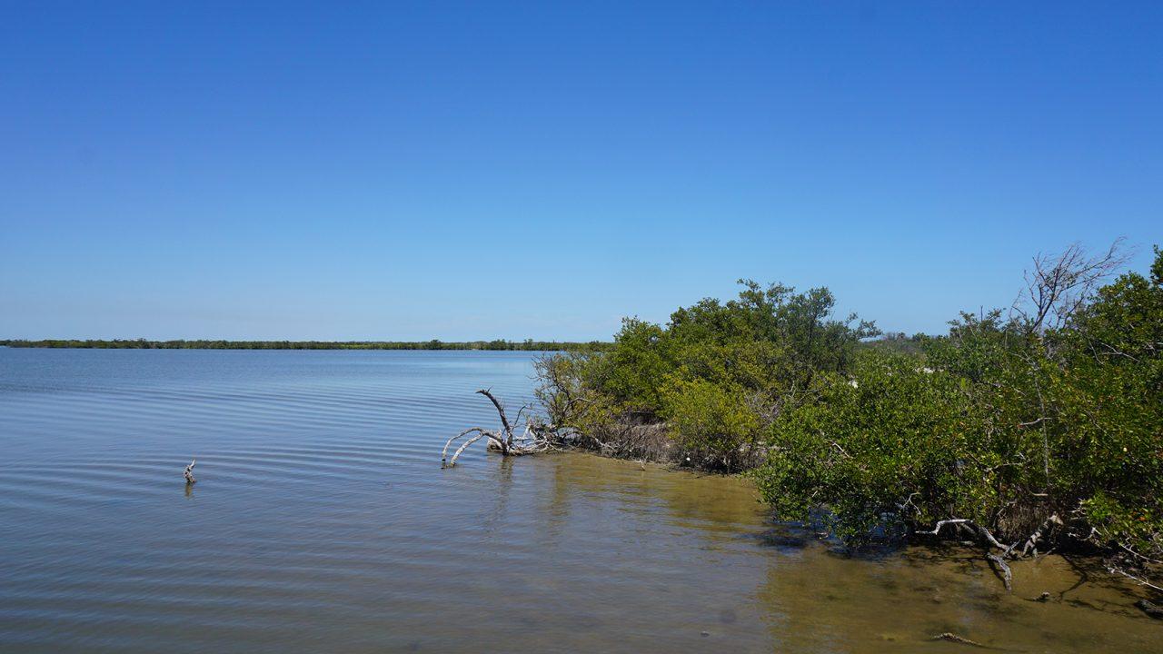 Eddy Creek Playalinda