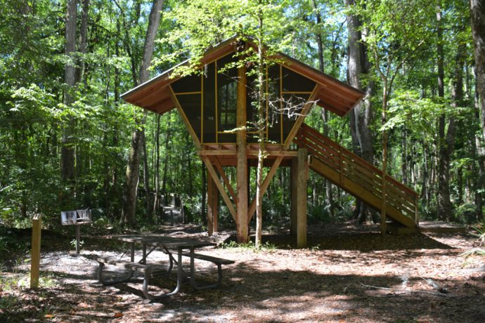 Treehouse at Camp Chowenwaw Park