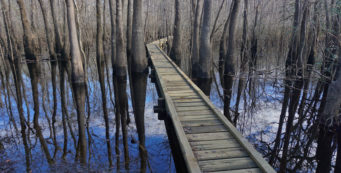 Florida Trail, Choctawhatchee River