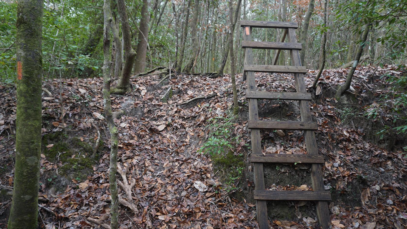 Florida Trail, Alaqua East