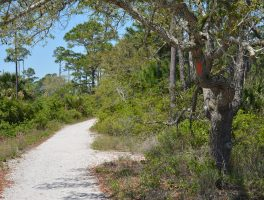 Florida Trail, Fort Pickens