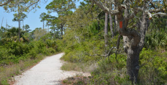 Florida Trail Fort Pickens