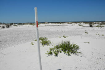 Hiking dunes at Fort Pickens