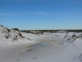 Florida Trail, Seashore
